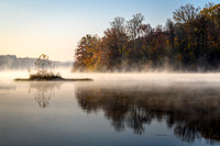 Misty Yellowwood Lake Sunrise